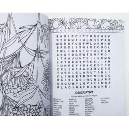 squiggle-a4-colouring-wordsearch-book-assorted-designs-[2]-4566-p.jpg