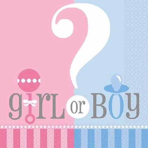 Unique Gender Reveal Pink & Blue Paper Napkins - Pack of 20