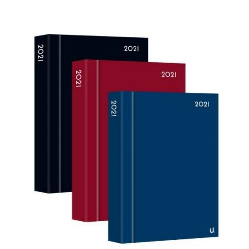 Martello A5 Page a Day 2021 Classic Diary - Assorted Colours