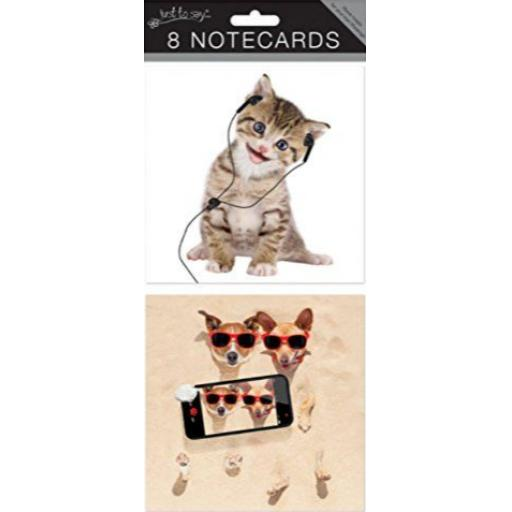 tallon-square-notecards-crazy-animals-pack-of-8-2822-1-p.png