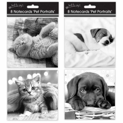 Tallon Square Notecards Pet Portraits - Pack of 8